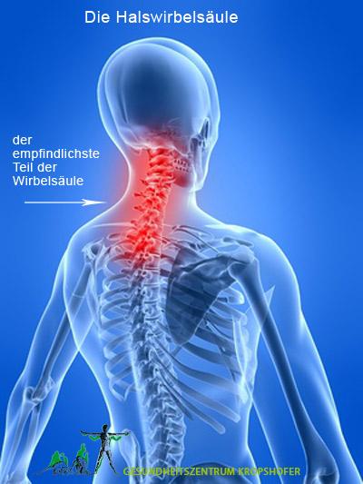 Anatomie Halswirbelsäule und warum es zu Rückenschmerzen ...