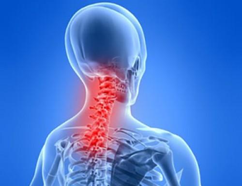 Anatomie der Halswirbelsäule